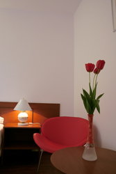 hotel-sannicolau-mare-single-room